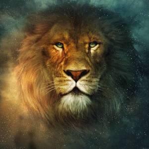 aslan4ef